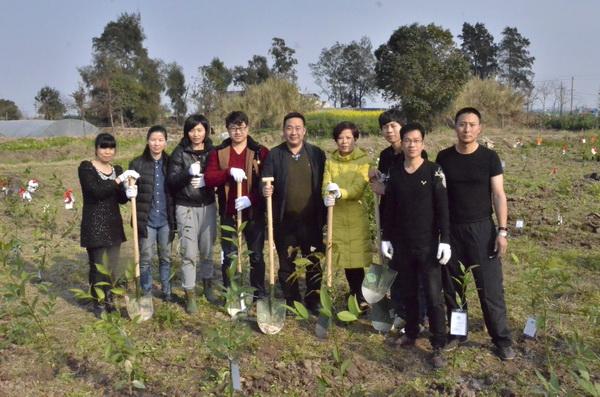 集团参加市绿化委员会组织的义务植树活动